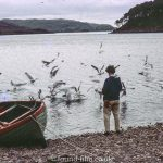 Man feeding birds at the water's edge in Shieldaig, September 1966