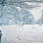 Heavy snow on a winter's day possibly from 1962